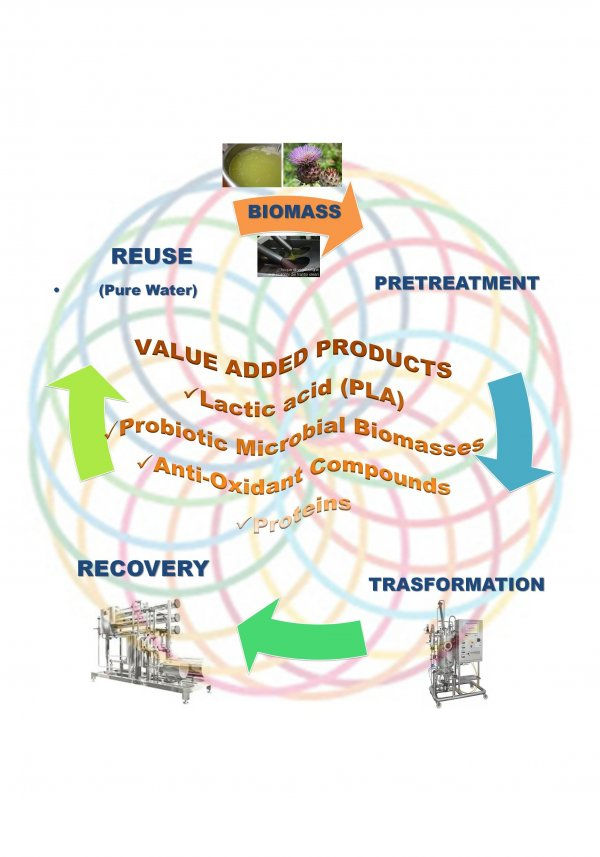 Agroindustrial by-products value chain design.