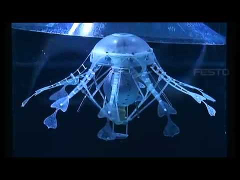 robot animali medusa