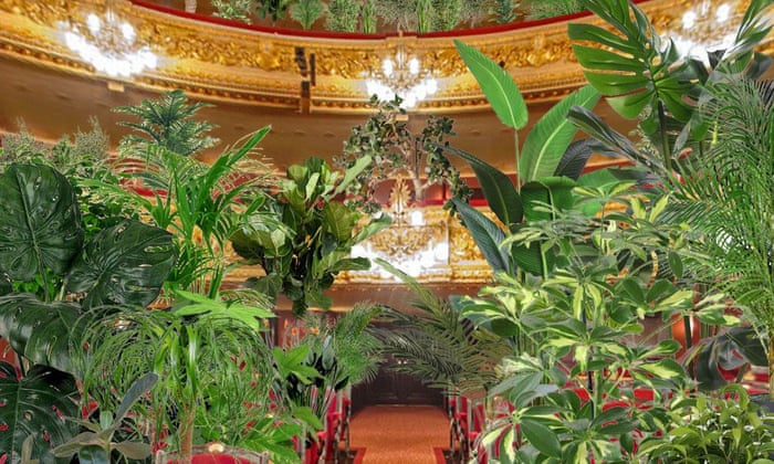 Serenading plants: Barcelona opera reopens with unusual concert