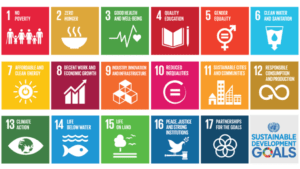 Agenda 2030 maker