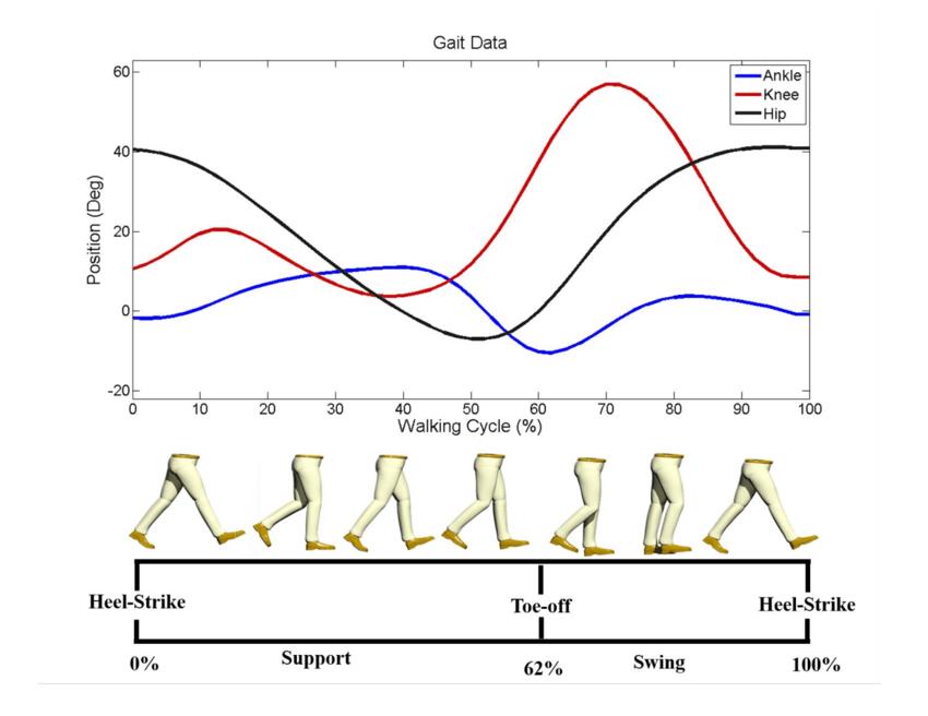 Ephi-SPA,  il calzino con sensori che analizza la camminata!