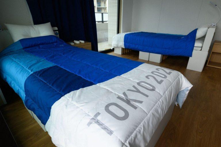cardboard beds